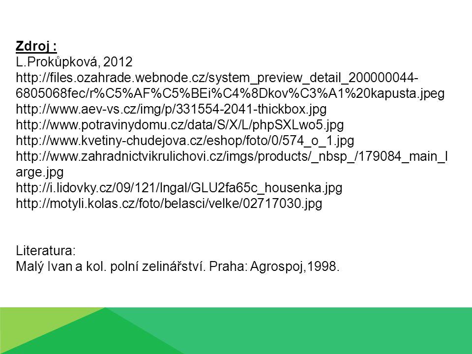 Zdroj : L.Prokůpková, 2012 http://files.ozahrade.webnode.cz/system_preview_detail_200000044- 6805068fec/r%C5%AF%C5%BEi%C4%8Dkov%C3%A1%20kapusta.jpeg h