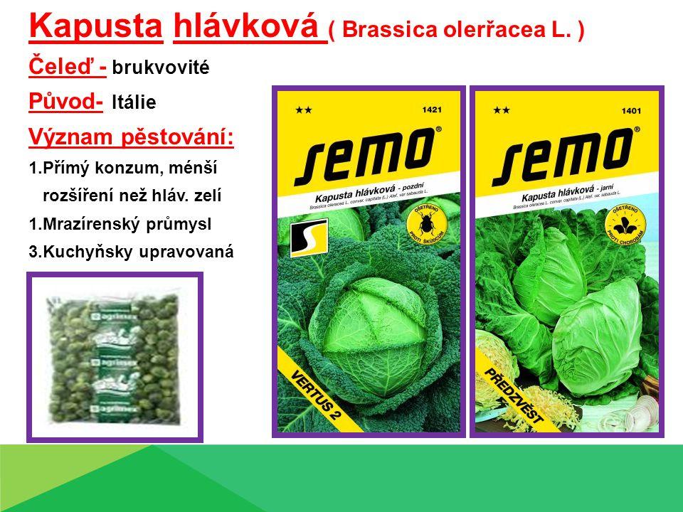 Kapusta hlávková ( Brassica olerřacea L. ) Čeleď - brukvovité Původ- Itálie Význam pěstování: 1.Přímý konzum, ménší rozšíření než hláv. zelí 1.Mrazíre