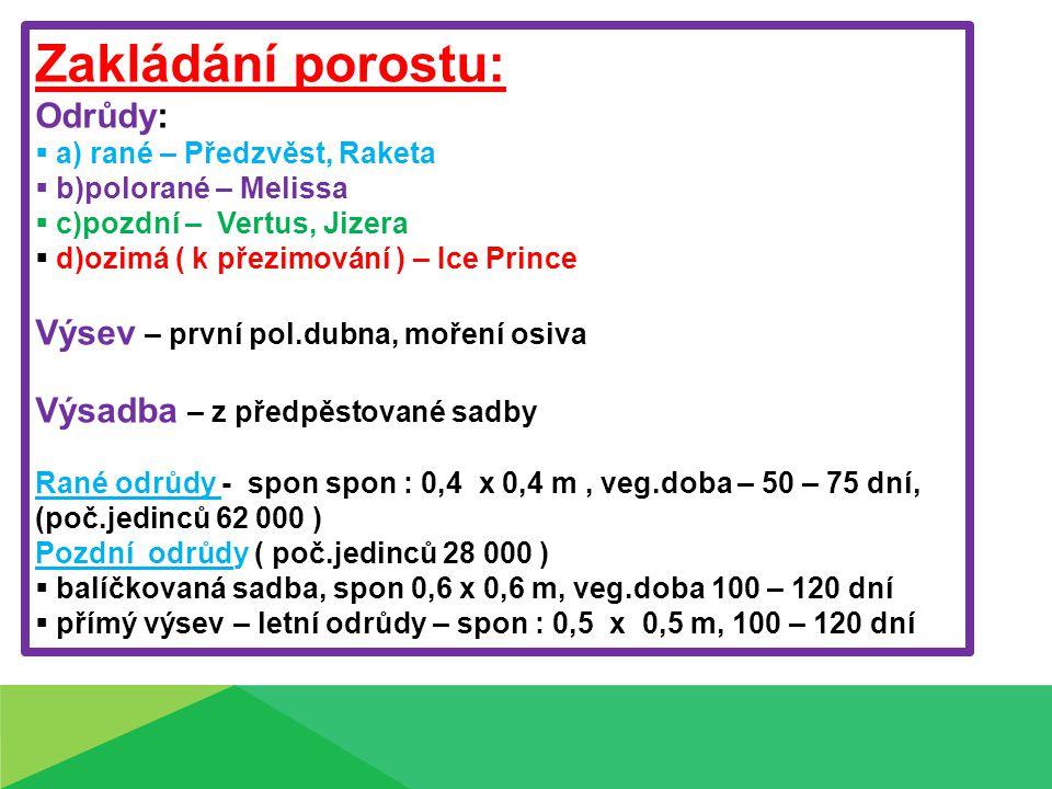 Zakládání porostu: Odrůdy:  a) rané – Předzvěst, Raketa  b)polorané – Melissa  c)pozdní – Vertus, Jizera  d)ozimá ( k přezimování ) – Ice Prince V