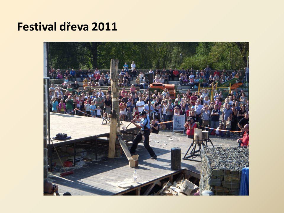 Festival dřeva 2011