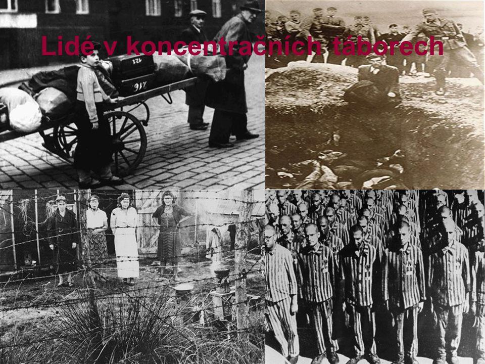 Sídla koncentračních táborů Osvětim (Polsko)-400 000 vězňů Ravensbrück (Německo)-tábor pro ženy 150 000 Terezín (Česká republika)-140 000 Varšava(Polsko)-40 000 Belzec (Polsko)-???-ale 600 000 mrtvých Treblinka ( Polsko)-???-ale 870 000 mrtvých Ale to je jen pár příkladů z několika set sídel!!!