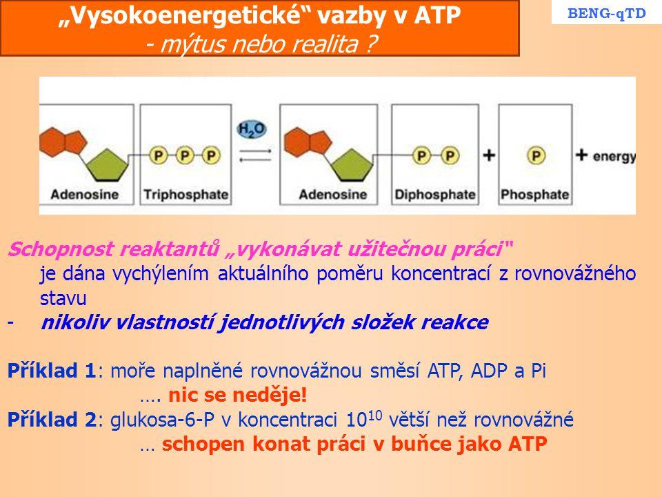 """"""" Vysokoenergetické"""" vazby v ATP - mýtus nebo realita ? Schopnost reaktantů """"vykonávat užitečnou práci"""" je dána vychýlením aktuálního poměru koncentra"""