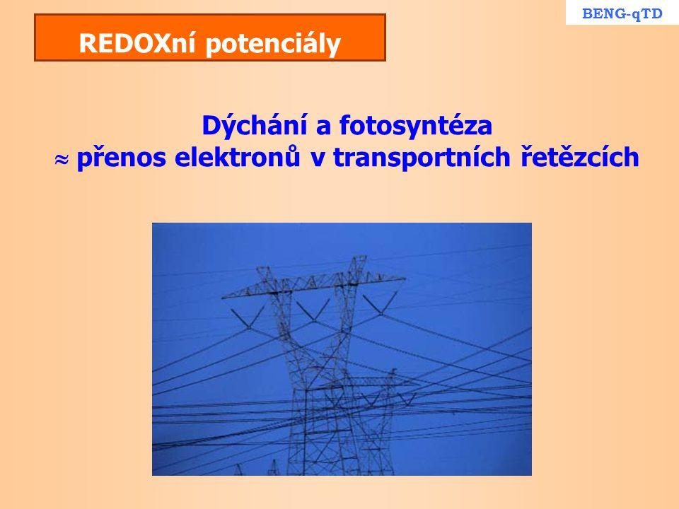 REDOXní potenciály Dýchání a fotosyntéza  přenos elektronů v transportních řetězcích BENG-qTD