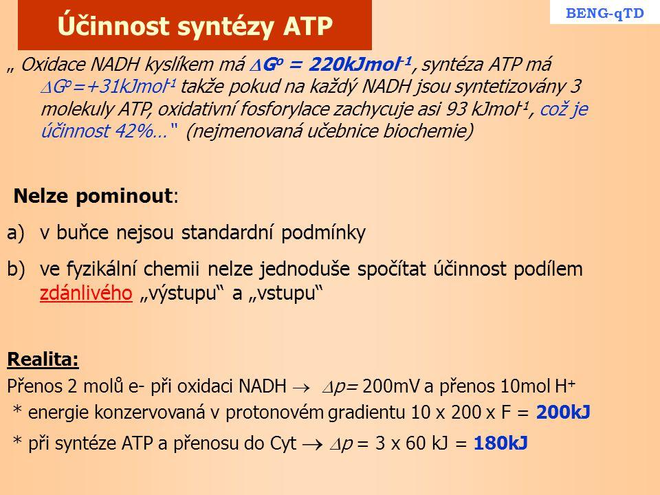 """Účinnost syntézy ATP """" Oxidace NADH kyslíkem má  G o = 220kJmol -1, syntéza ATP má  G o =+31kJmol -1 takže pokud na každý NADH jsou syntetizovány 3"""