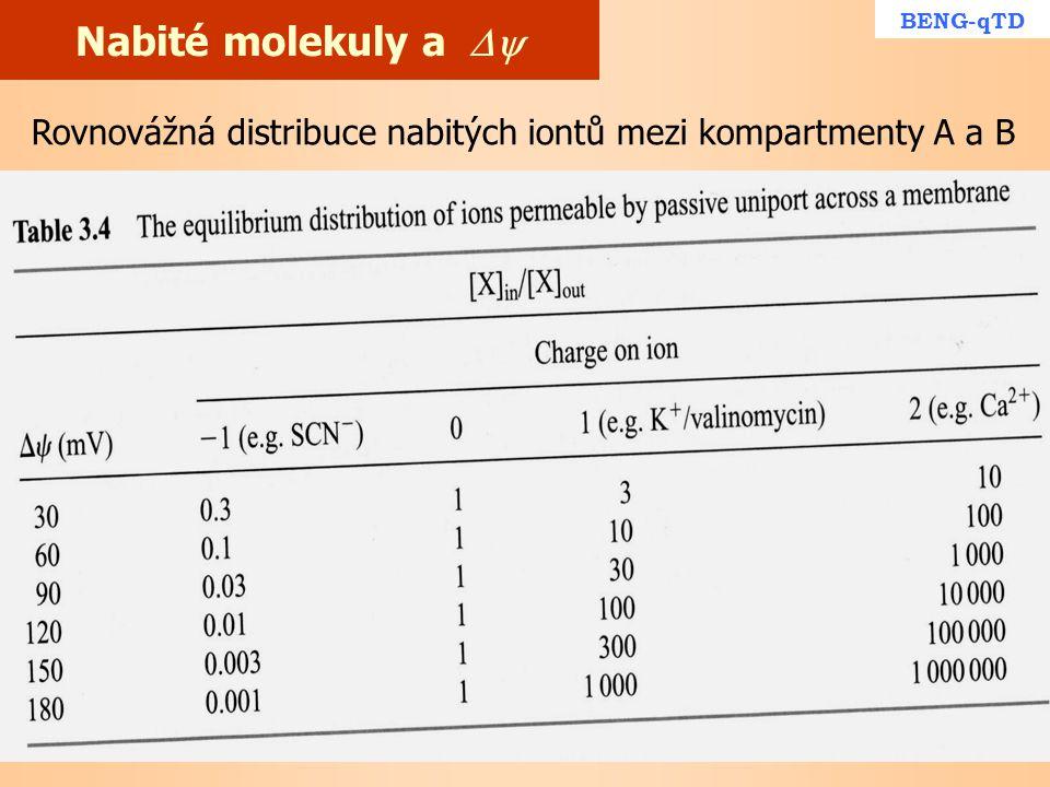 Nabité molekuly a  BENG-qTD Rovnovážná distribuce nabitých iontů mezi kompartmenty A a B