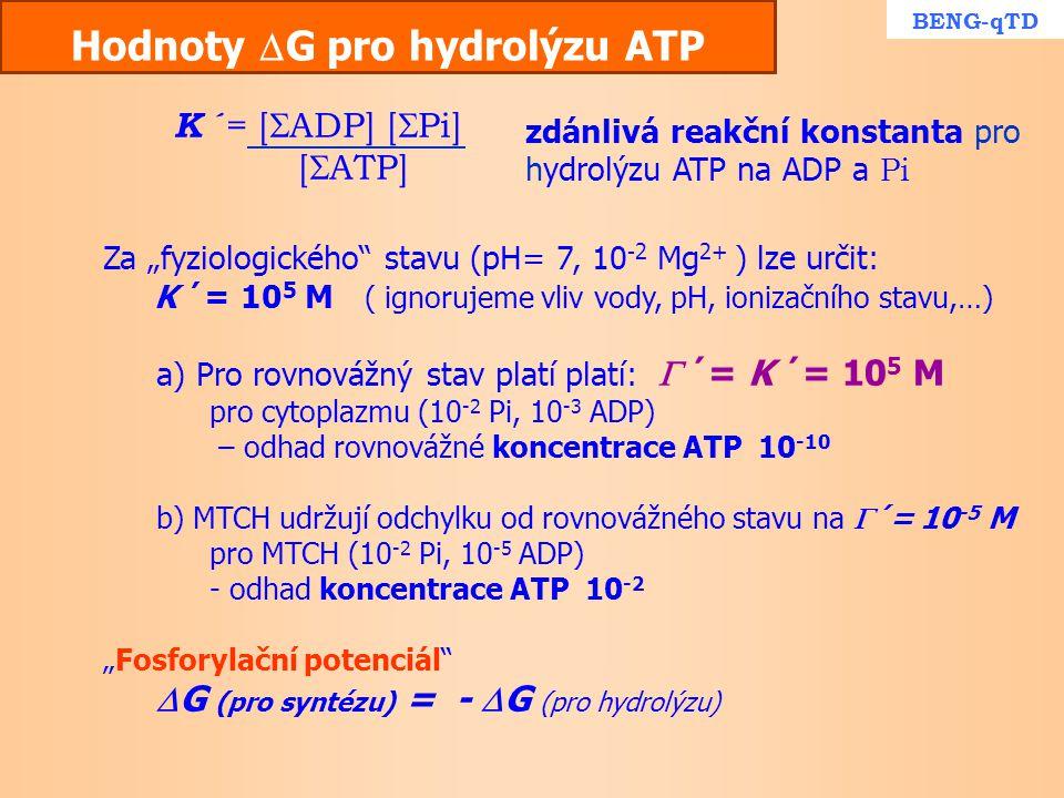 """Hodnoty  G pro hydrolýzu ATP Za """"fyziologického"""" stavu (pH= 7, 10 -2 Mg 2+ ) lze určit: K ´= 10 5 M ( ignorujeme vliv vody, pH, ionizačního stavu,…)"""