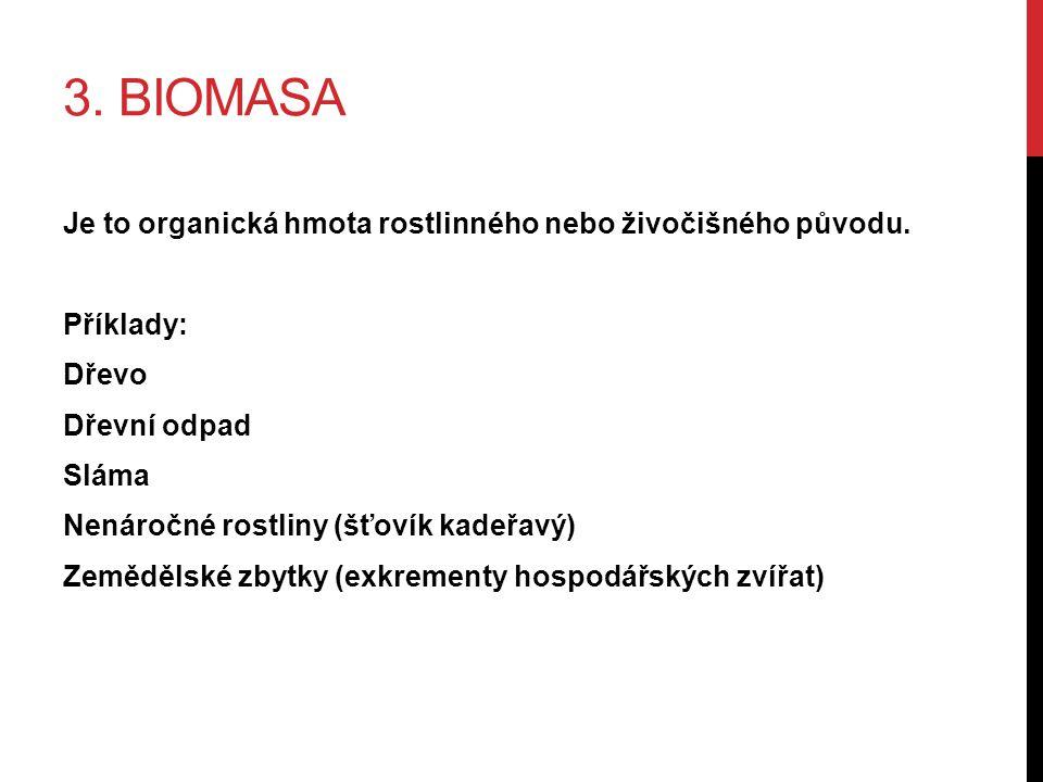 3. BIOMASA Je to organická hmota rostlinného nebo živočišného původu.