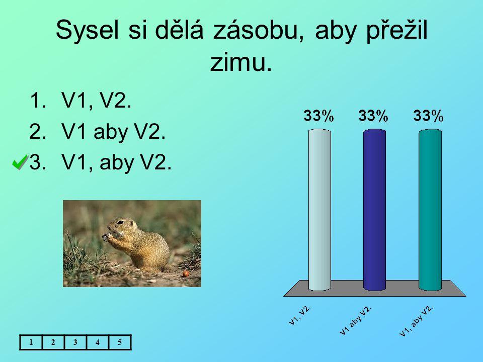 Sysel si dělá zásobu, aby přežil zimu. 12345 1.V1, V2. 2.V1 aby V2. 3.V1, aby V2.