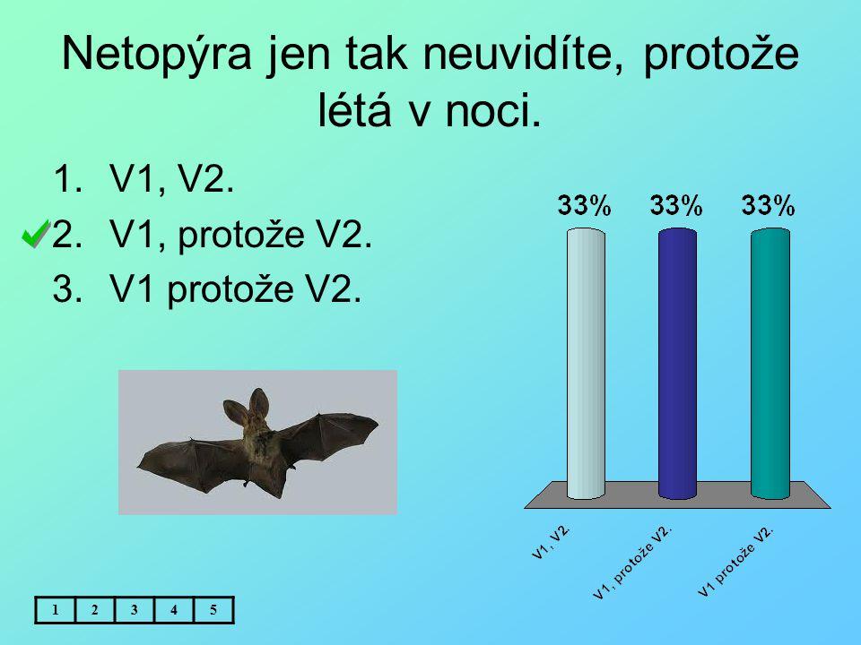Netopýra jen tak neuvidíte, protože létá v noci. 12345 1.V1, V2. 2.V1, protože V2. 3.V1 protože V2.
