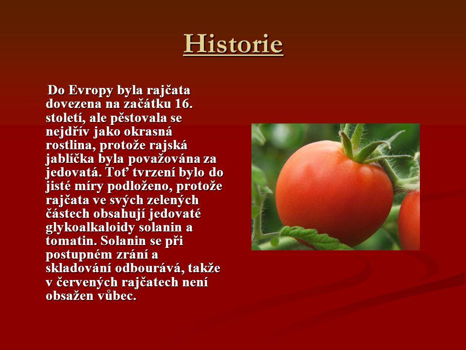 Historie Do Evropy byla rajčata dovezena na začátku 16. století, ale pěstovala se nejdřív jako okrasná rostlina, protože rajská jablíčka byla považová