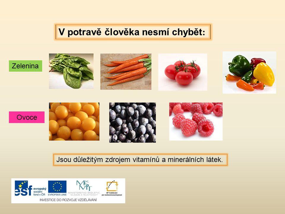 V potravě člověka nesmí chybět : Zelenina Ovoce Jsou důležitým zdrojem vitamínů a minerálních látek.