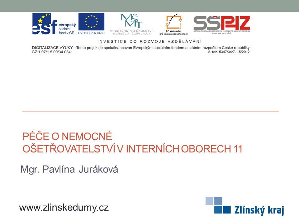 PÉČE O NEMOCNÉ OŠETŘOVATELSTVÍ V INTERNÍCH OBORECH 11 Mgr. Pavlína Juráková www.zlinskedumy.cz