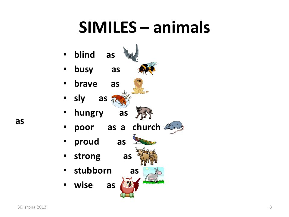 SIMILES – animals blind as busy as brave as sly as hungry as poor as a church proud as strong as stubborn as wise as as 30. srpna 20138