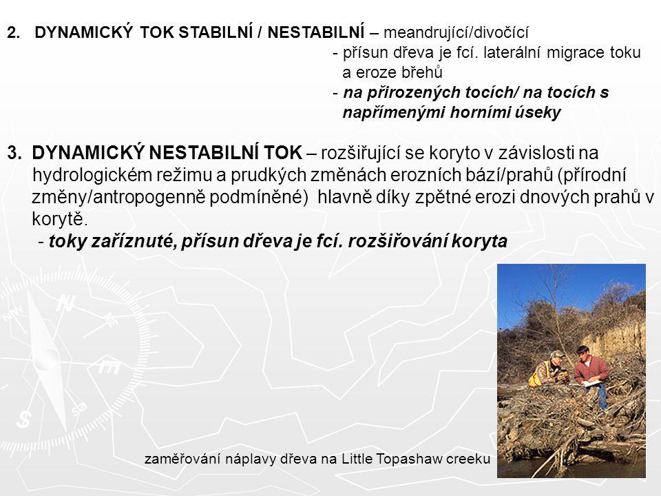 2. DYNAMICKÝ TOK STABILNÍ / NESTABILNÍ – meandrující/divočící - přísun dřeva je fcí. laterální migrace toku a eroze břehů - na přirozených tocích/ na