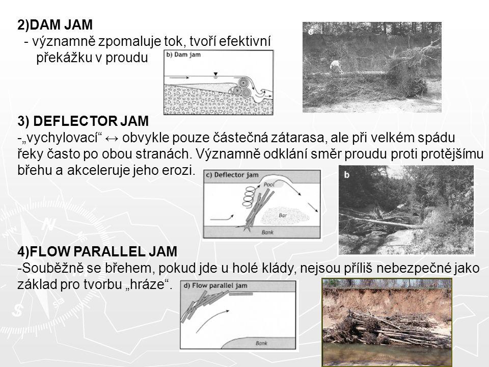 """2)DAM JAM - významně zpomaluje tok, tvoří efektivní překážku v proudu 3) DEFLECTOR JAM -""""vychylovací ↔ obvykle pouze částečná zátarasa, ale při velkém spádu řeky často po obou stranách."""