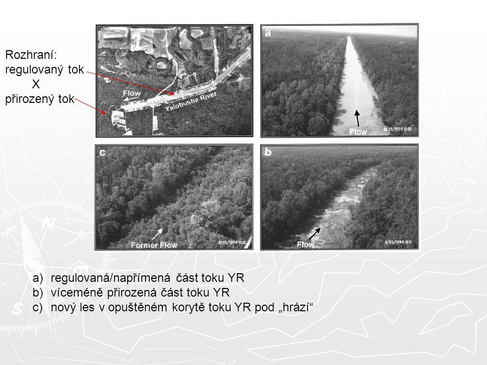"""Rozhraní: regulovaný tok X přirozený tok a)regulovaná/napřímená část toku YR b)víceméně přirozená část toku YR c)nový les v opuštěném korytě toku YR pod """"hrází"""