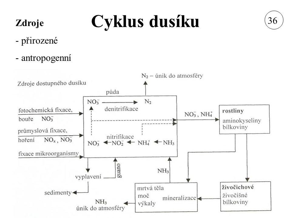 Cyklus dusíku Zdroje - přirozené - antropogenní 36
