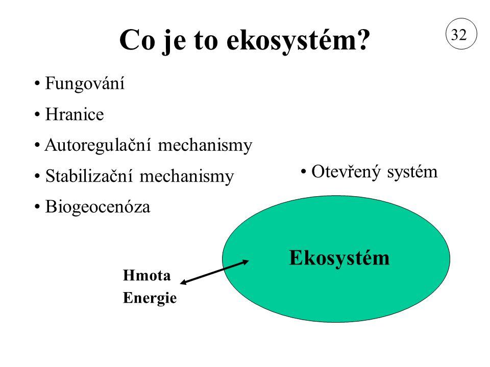 Složky a procesy ekosystému Složky Anorganické látky Organické látky Živé organismy - Producenti - Konzumenti - Dekompozitoři Procesy Produkce Dekompozice Potravní řetězce Tok energie Koloběhy látek Autoregulační procesy Stabilizační procesy 32