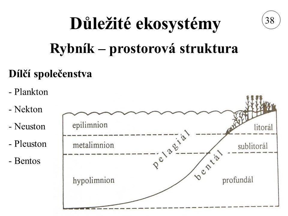 Důležité ekosystémy Rybník – prostorová struktura Dílčí společenstva - Plankton - Nekton - Neuston - Pleuston - Bentos 38