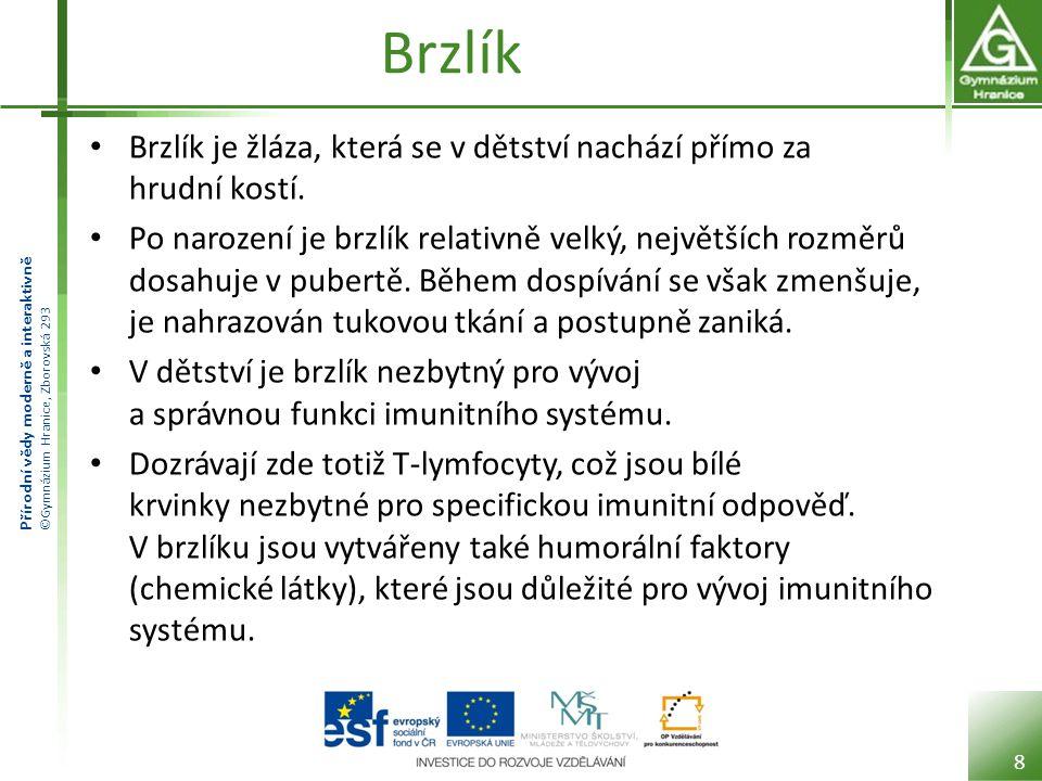 Přírodní vědy moderně a interaktivně ©Gymnázium Hranice, Zborovská 293 Brzlík Brzlík je žláza, která se v dětství nachází přímo za hrudní kostí.