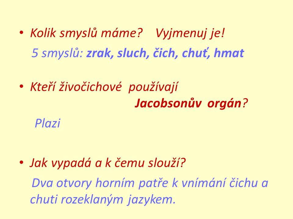Kolik smyslů máme? Vyjmenuj je! 5 smyslů: zrak, sluch, čich, chuť, hmat Kteří živočichové používají Jacobsonův orgán? Plazi Jak vypadá a k čemu slouží