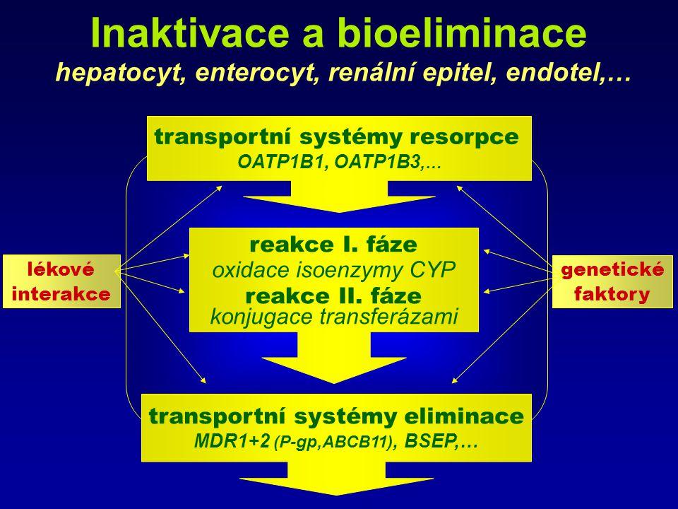 Inaktivace a bioeliminace hepatocyt, enterocyt, renální epitel, endotel,… transportní systémy resorpce OATP1B1, OATP1B3,… transportní systémy eliminac