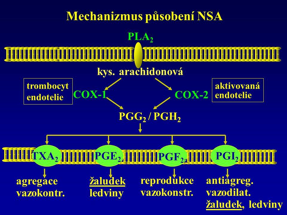 Mechanizmus působení NSA PLA 2 kys. arachidonová PGG 2 / PGH 2 COX-2 trombocyt endotelie aktivovaná endotelie COX-1 TXA 2 PGE 2 PGF 2a PGI 2 agregace