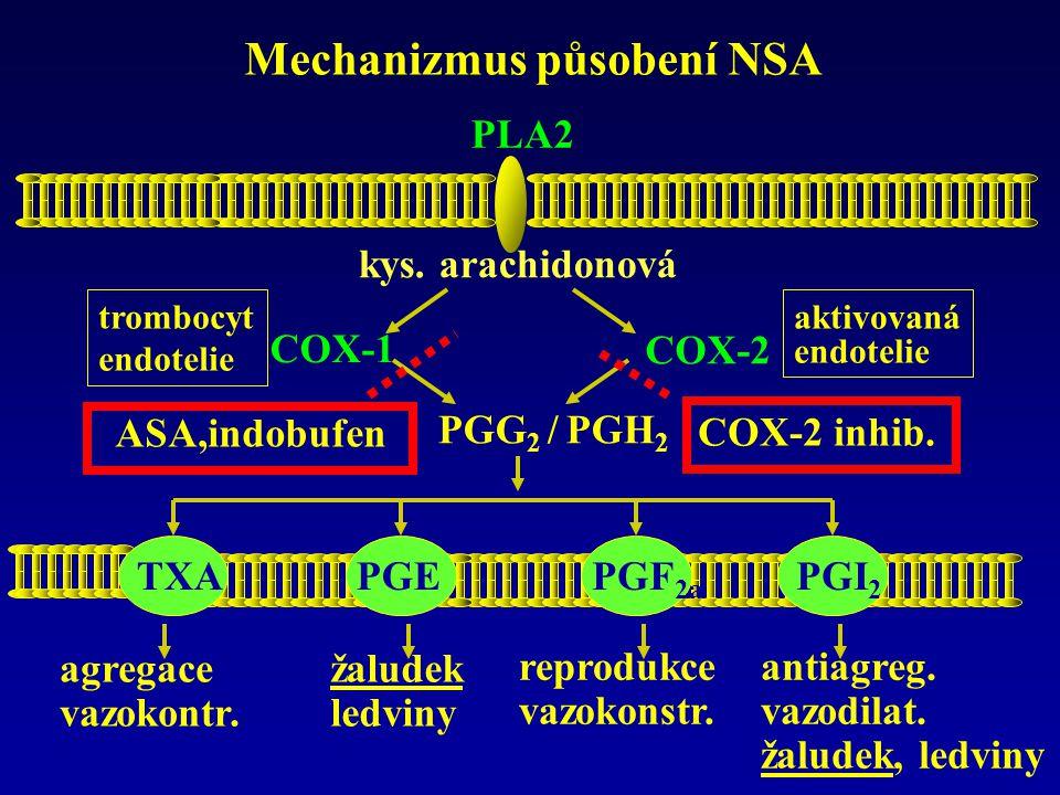 Mechanizmus působení NSA PLA2 kys. arachidonová PGG 2 / PGH 2 COX-2 trombocyt endotelie aktivovaná endotelie COX-1 TXA 2 PGE 2 PGF 2a PGI 2 ASA,indobu