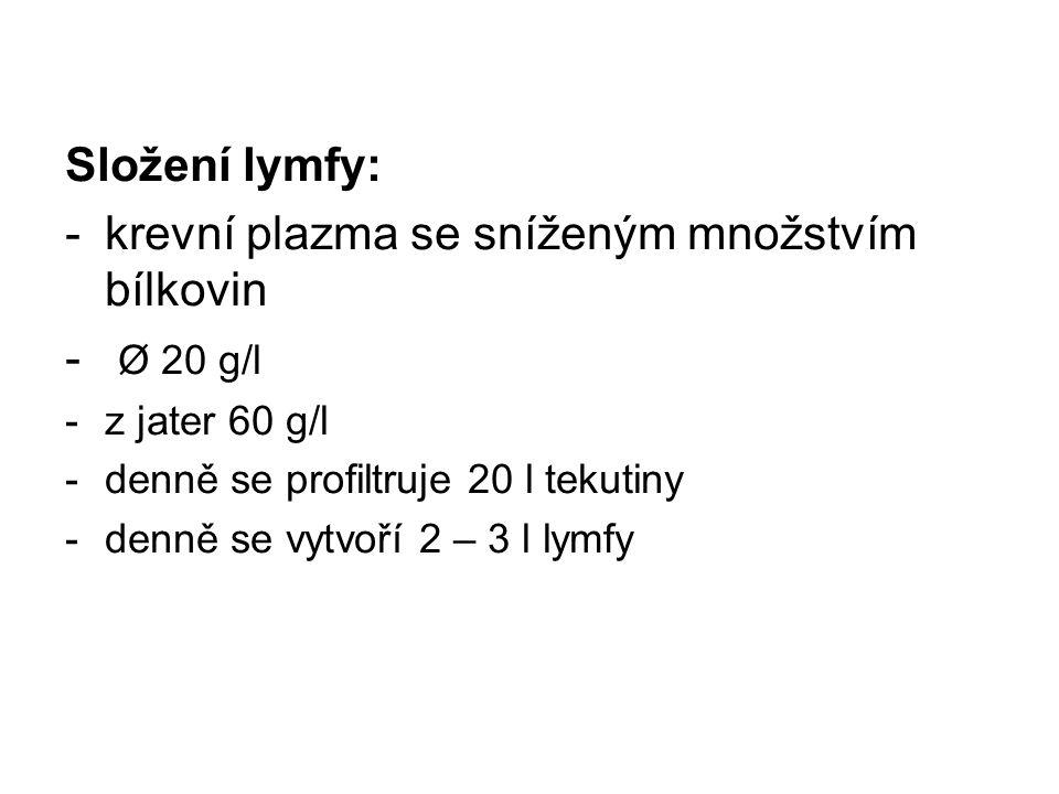Složení lymfy: -krevní plazma se sníženým množstvím bílkovin - Ø 20 g/l -z jater 60 g/l -denně se profiltruje 20 l tekutiny -denně se vytvoří 2 – 3 l