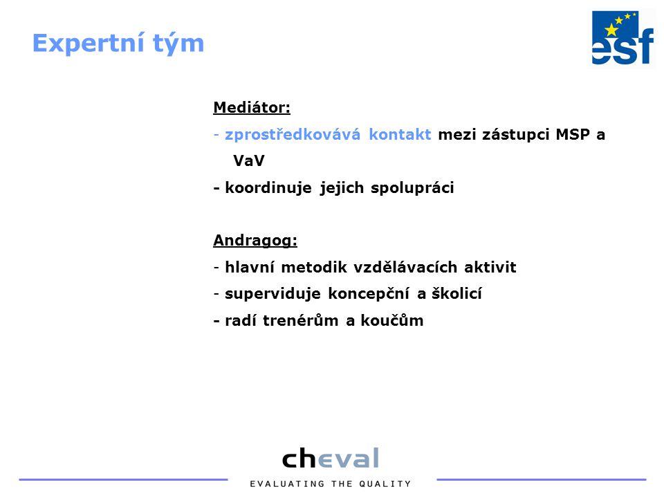 Mediátor: - zprostředkovává kontakt mezi zástupci MSP a VaV - koordinuje jejich spolupráci Andragog: - hlavní metodik vzdělávacích aktivit - superviduje koncepční a školicí - radí trenérům a koučům Expertní tým