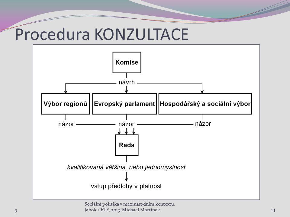 Procedura KONZULTACE 9 Sociální politika v mezinárodním kontextu. Jabok / ETF, 2013. Michael Martinek14