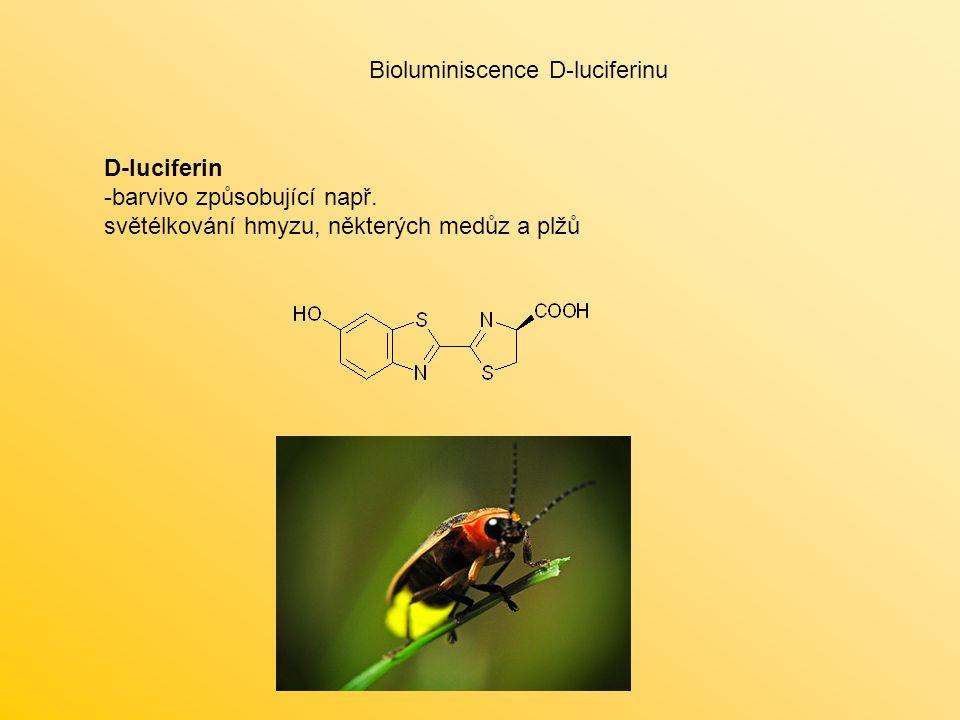 D-luciferin -barvivo způsobující např. světélkování hmyzu, některých medůz a plžů Bioluminiscence D-luciferinu