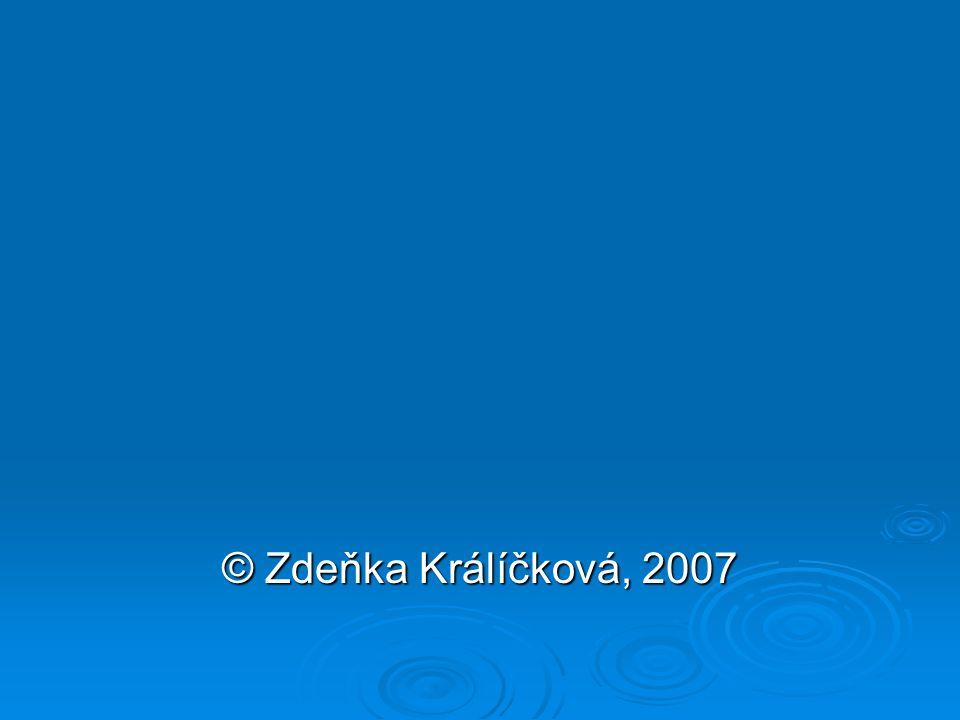 © Zdeňka Králíčková, 2007