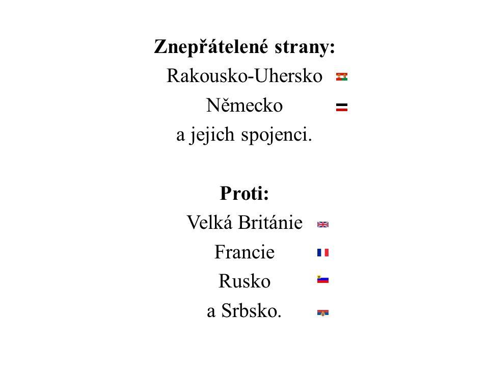 Znepřátelené strany: Rakousko-Uhersko Německo a jejich spojenci. Proti: Velká Británie Francie Rusko a Srbsko.