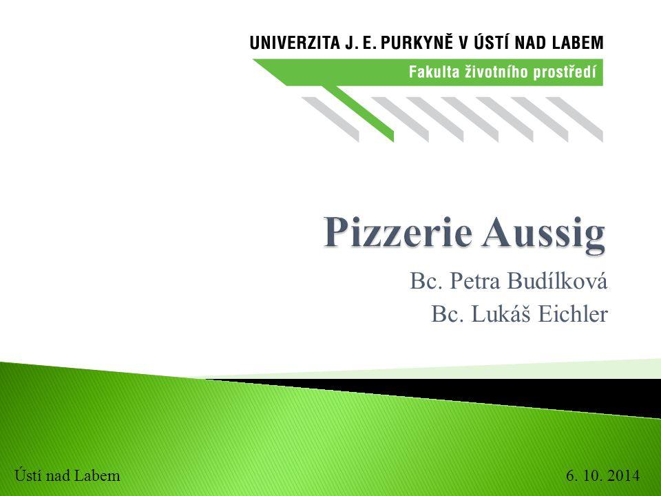 Bc. Petra Budílková Bc. Lukáš Eichler 6. 10. 2014Ústí nad Labem