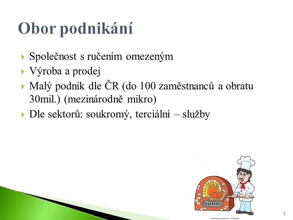  Společnost s ručením omezeným  Výroba a prodej  Malý podnik dle ČR (do 100 zaměstnanců a obratu 30mil.) (mezinárodně mikro)  Dle sektorů: soukrom