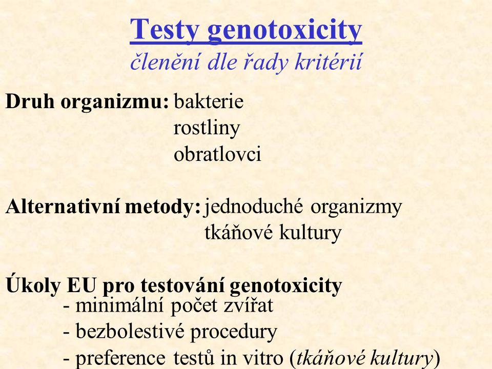Testy genotoxicity členění dle řady kritérií Druh organizmu: Alternativní metody: Úkoly EU pro testování genotoxicity bakterie rostliny obratlovci jed