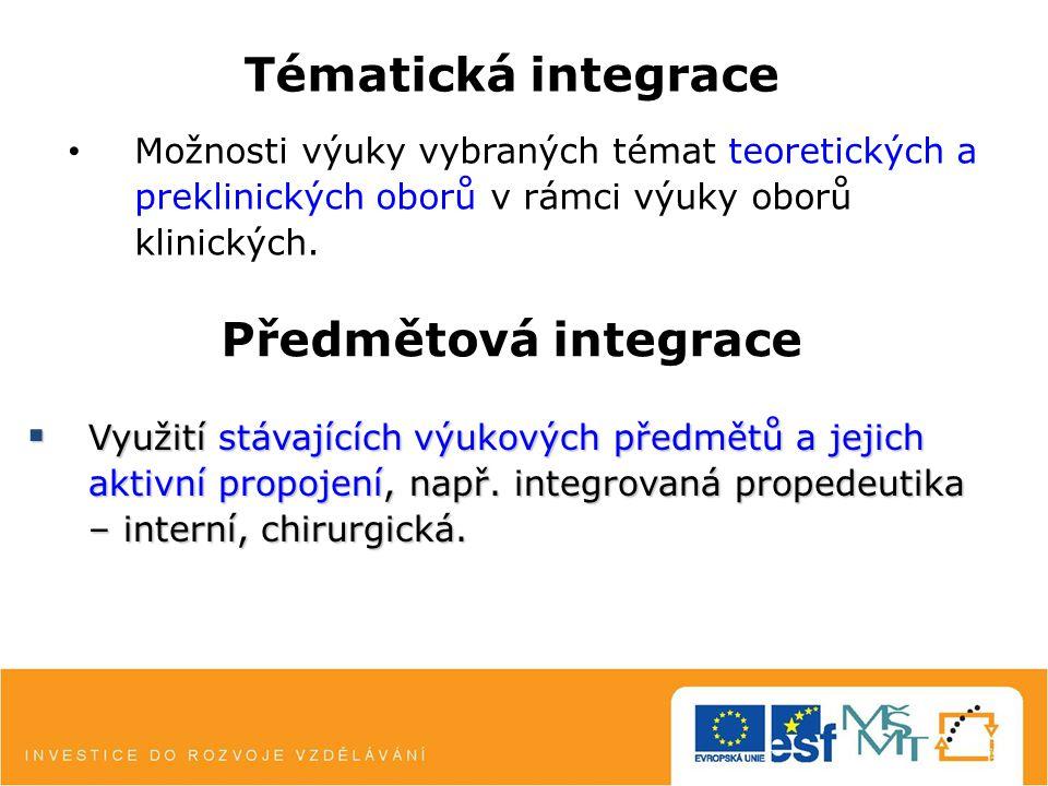 Synergická integrace Tvorba nových výukových předmětů jako modelových pro integrovanou výuku, např.