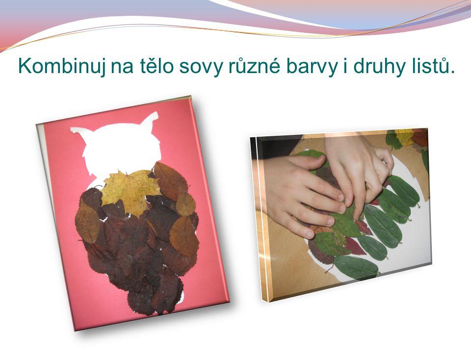 Kombinuj na tělo sovy různé barvy i druhy listů.