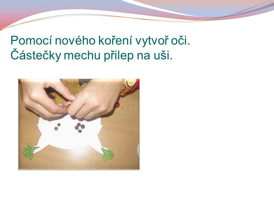 Pomocí nového koření vytvoř oči. Částečky mechu přilep na uši.