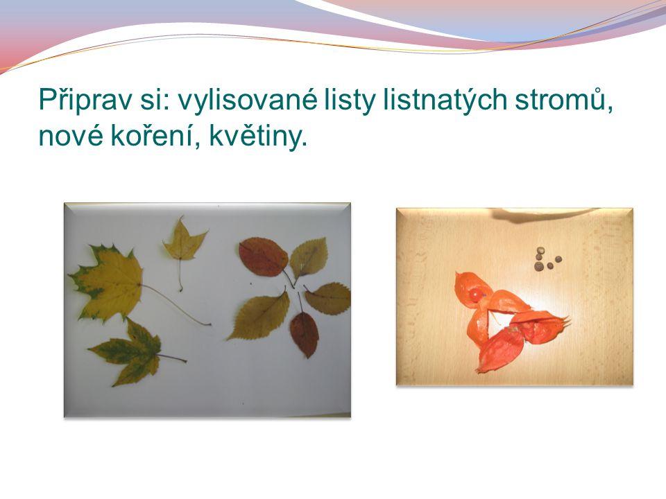 Připrav si: vylisované listy listnatých stromů, nové koření, květiny.