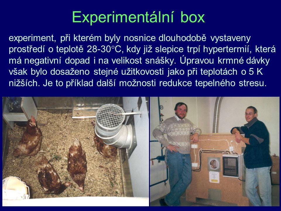 47 Experimentální box experiment, při kterém byly nosnice dlouhodobě vystaveny prostředí o teplotě 28-30°C, kdy již slepice trpí hypertermií, která má