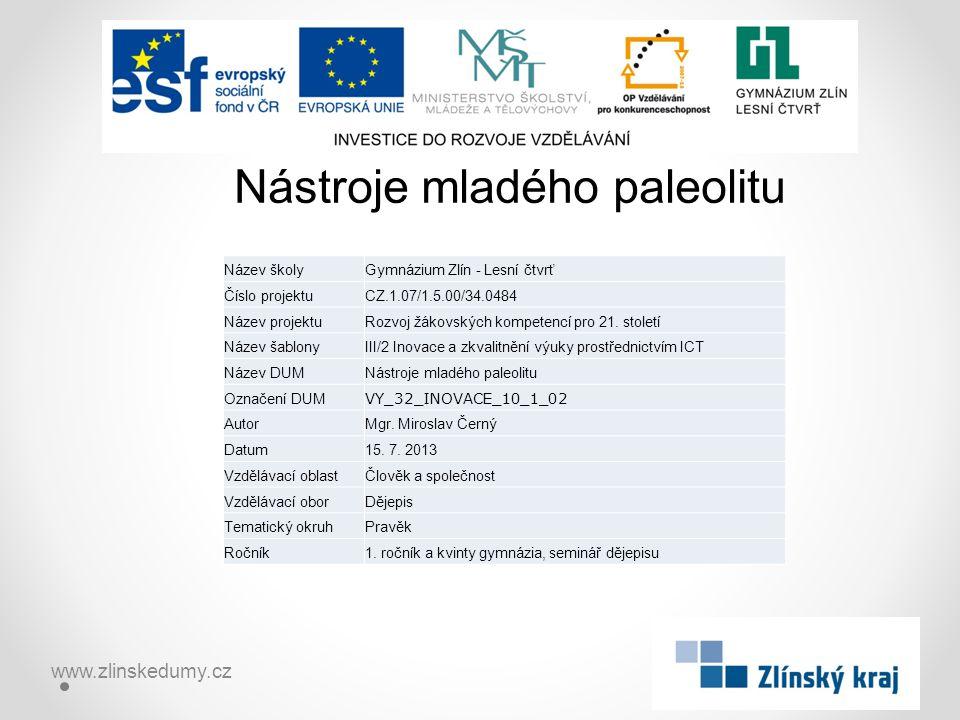 Nástroje mladého paleolitu www.zlinskedumy.cz Název školyGymnázium Zlín - Lesní čtvrť Číslo projektuCZ.1.07/1.5.00/34.0484 Název projektuRozvoj žákovských kompetencí pro 21.