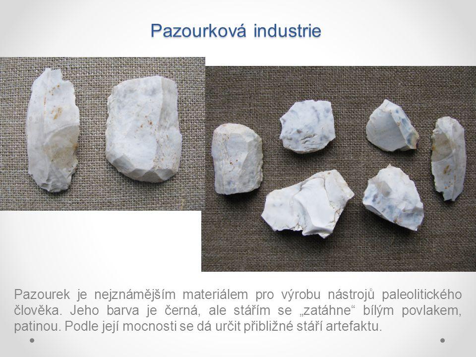 Pazourková industrie Pazourek je nejznámějším materiálem pro výrobu nástrojů paleolitického člověka.