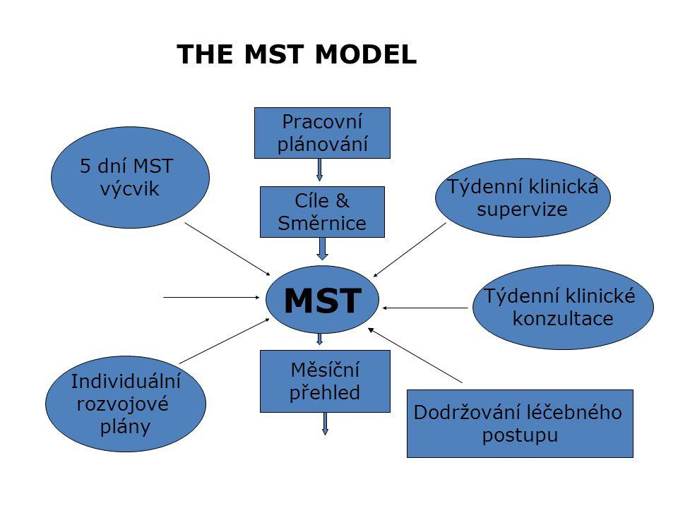 MST systém v praxi: Organizace Supervisor Terapeut Mladistvý/ Rodina TAM-R Manuál Konzultant Manuál Program data a léčebné výsledky Manuál Měření dodržování postupu Měření dodržování postupu