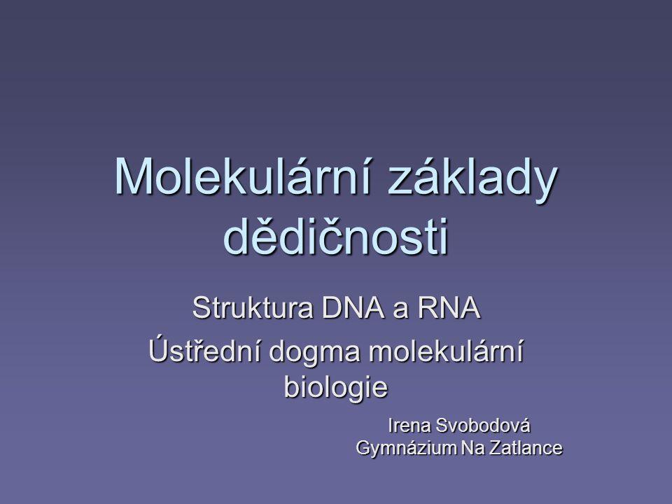 Molekulární základy dědičnosti Struktura DNA a RNA Ústřední dogma molekulární biologie Irena Svobodová Gymnázium Na Zatlance