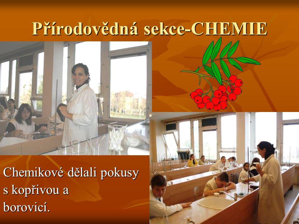 Přírodovědná sekce-CHEMIE Chemikové dělali pokusy s kopřivou a borovicí.