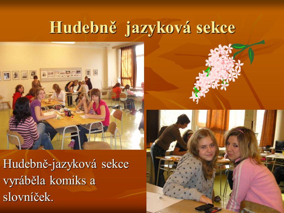 Hudebně jazyková sekce Hudebně-jazyková sekce vyráběla komiks a slovníček.