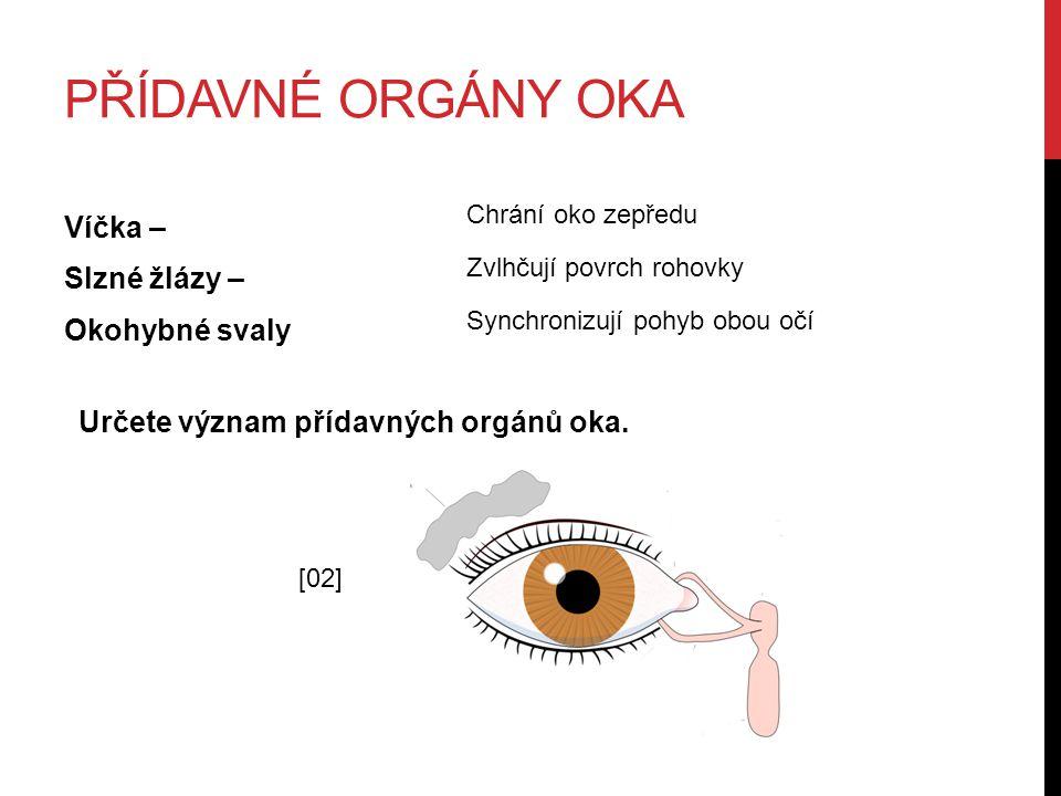 PŘÍDAVNÉ ORGÁNY OKA Víčka – Slzné žlázy – Okohybné svaly Určete význam přídavných orgánů oka. Chrání oko zepředu Zvlhčují povrch rohovky Synchronizují