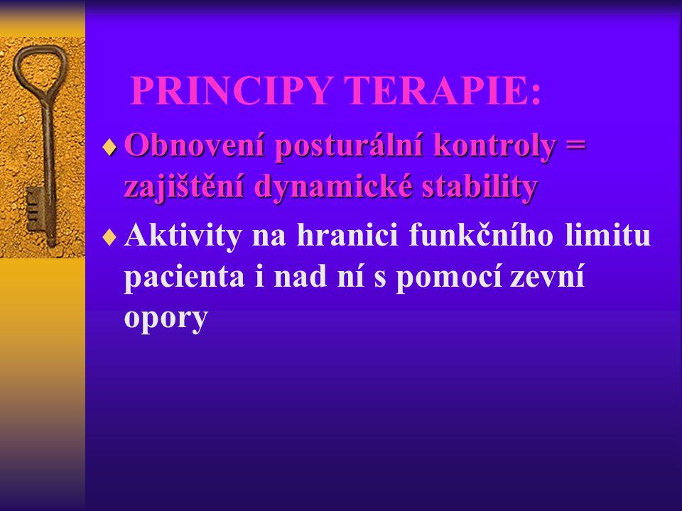 PRINCIPY TERAPIE:  Obnovení posturální kontroly = zajištění dynamické stability  Aktivity na hranici funkčního limitu pacienta i nad ní s pomocí zev
